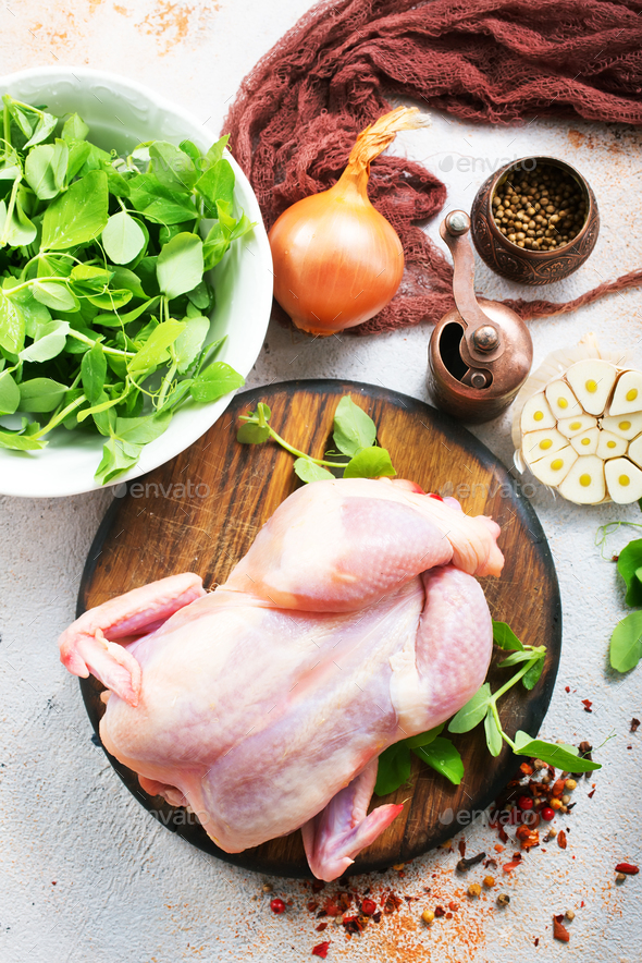 chicken - Stock Photo - Images