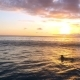Young Woman Paddling at Surfboard in Ocean - VideoHive Item for Sale