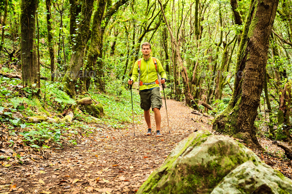 Hiker walking trekking in green forest - Stock Photo - Images