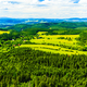 Summer landscape green forest and mountains - PhotoDune Item for Sale