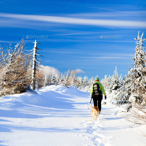 Winter hiking woman and dog - Stock Photo - Images