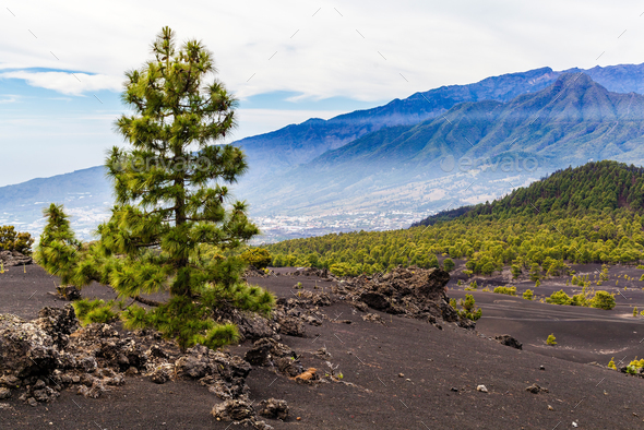 Mountains landscape volcanic island - Stock Photo - Images