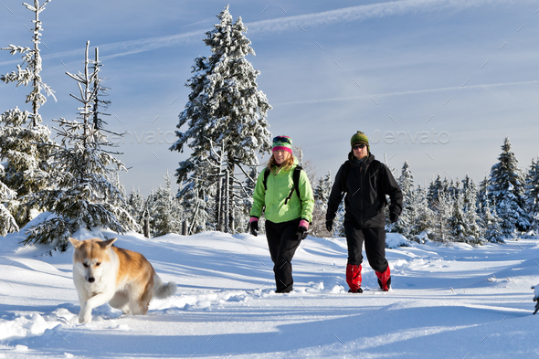 Couple hiking with dog in winter mountains - Stock Photo - Images