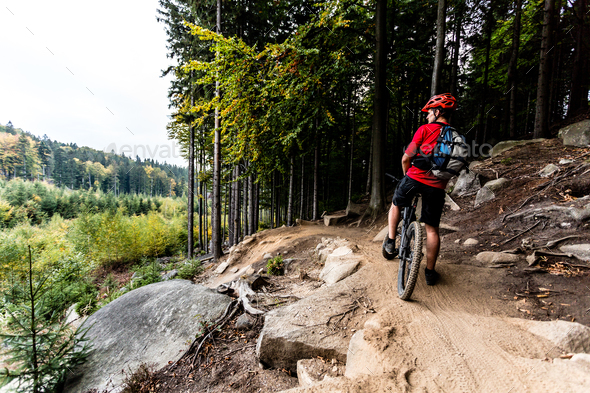 Mountain biker riding cycling in autumn forest trail - Stock Photo - Images