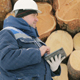 Worker With Tablet Computer Against Big Pile of Logs in Winter Forest - VideoHive Item for Sale