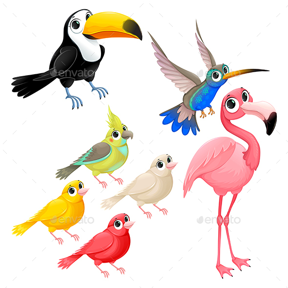 Group of Tropical Birds - Animals Characters