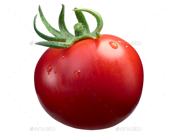 Marglobe ripe tomato, paths - Stock Photo - Images