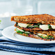 Fresh green mozzarella grilled rye sandwich - PhotoDune Item for Sale