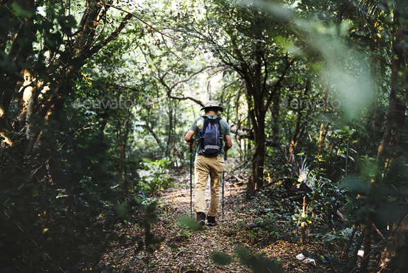 Man trekking in a forest - Stock Photo - Images