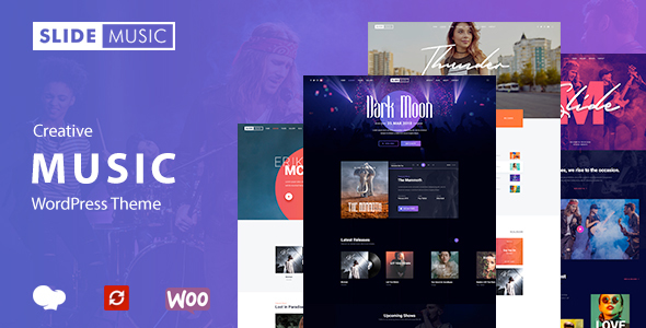 Image of Slide - Music WordPress Theme