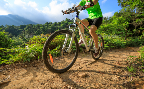 Cycling on morning forest trail - Stock Photo - Images