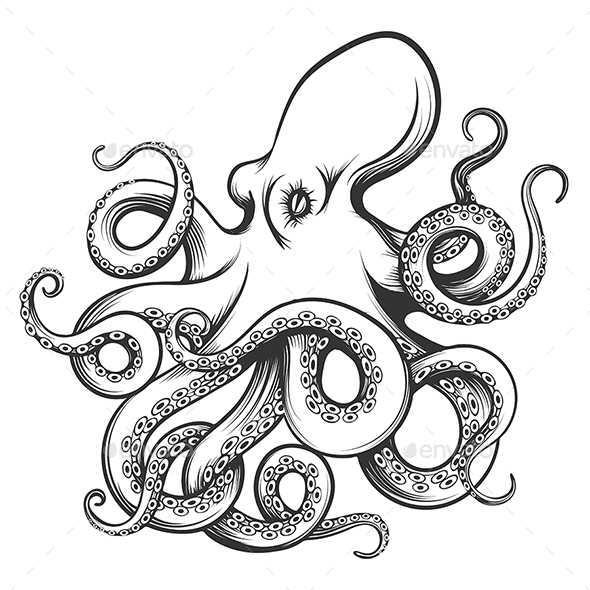 Octopus Drawn in Engraving Style - Tattoos Vectors