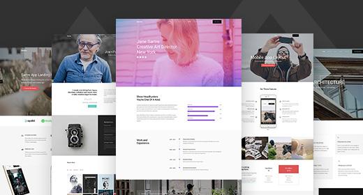 Our Wordpress Themes