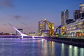 Puerto Madero and the Puente de la mujer in Buenos Aires - PhotoDune Item for Sale