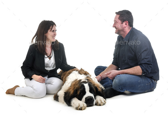 young saint bernard and owners - Stock Photo - Images