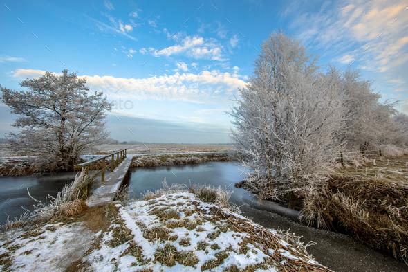Wooden Footbridge over Frozen canal in Drenthe - Stock Photo - Images