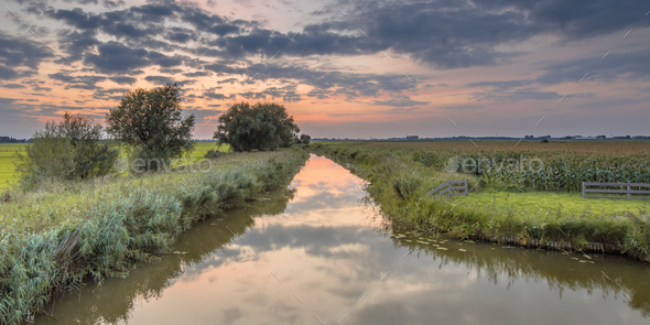 Canal through agricultural landscape - Stock Photo - Images