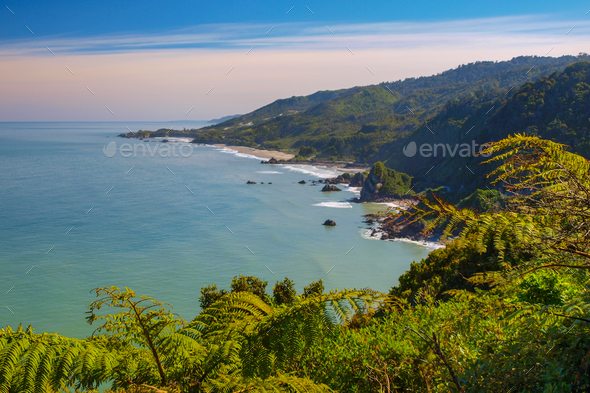 View over Paparoa National Park - Stock Photo - Images