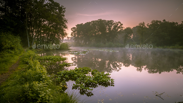 Spring lake in nature reserve - Stock Photo - Images
