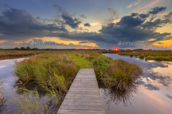 Wetland Footbridge with setting sun - Stock Photo - Images