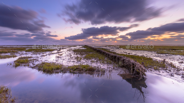 Wadden sea Tidal marsh at sunset - Stock Photo - Images
