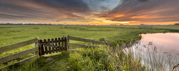 Panorama  gate view of agricultural landscape - Stock Photo - Images