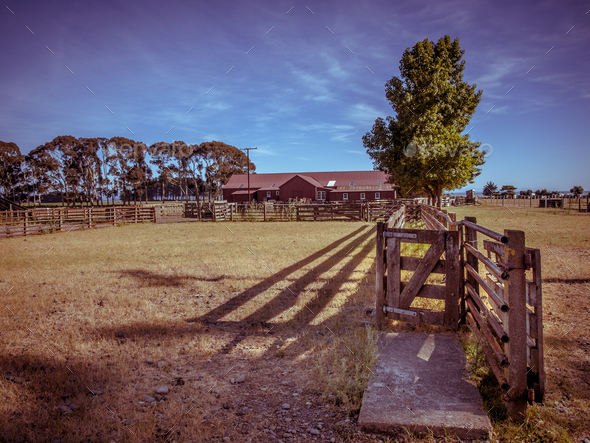 Old New Zealand ranch in vintage color toning - Stock Photo - Images
