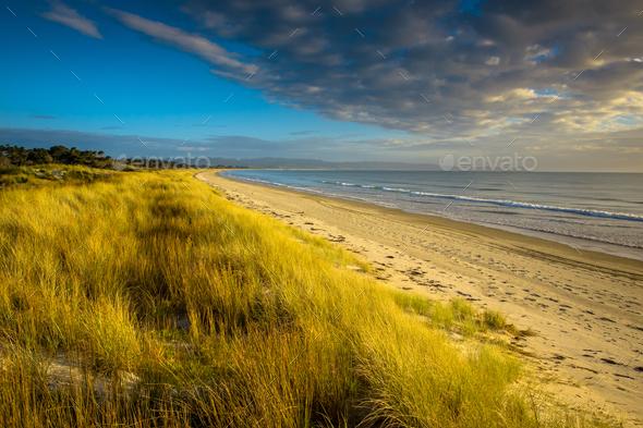 Uretiti Beach New Zealand - Stock Photo - Images