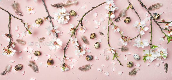 Easter background with eggs, almond flowers and feathers, top view - Stock Photo - Images