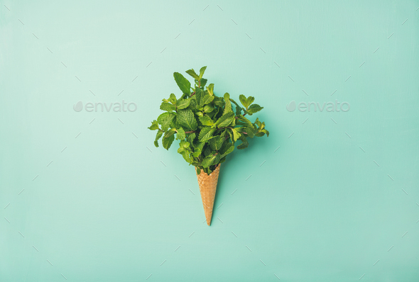 Waffle cone with fresh mint - Stock Photo - Images