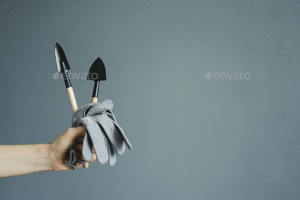 hand holding small shovel and gloves - Stock Photo - Images