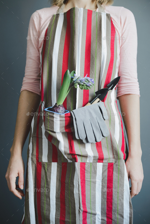 woman stands in striped apron with hyacinth and small metal shovel - Stock Photo - Images