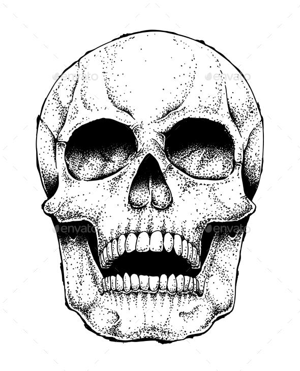 Human Skull Image - Miscellaneous Vectors