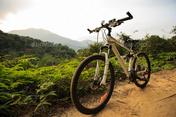 Mountain bike on trail - Stock Photo - Images