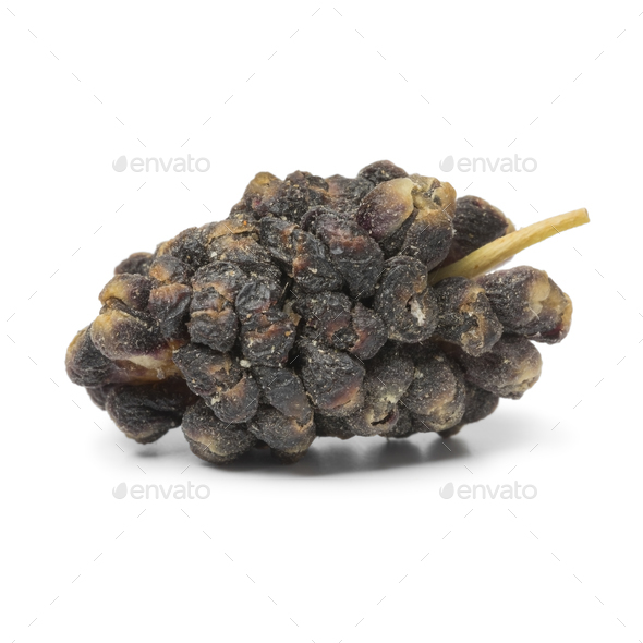 Single dried black mulberry close up - Stock Photo - Images