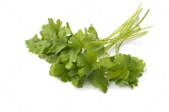 Bunch of fresh green parsley - Stock Photo - Images