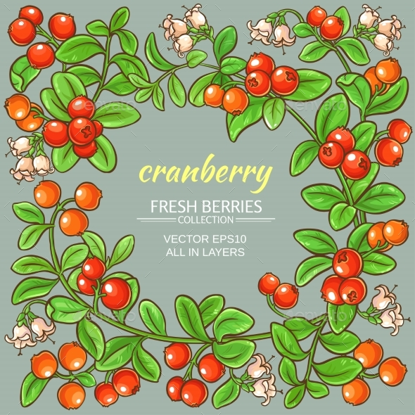 Cranberry Vector Frame - Food Objects
