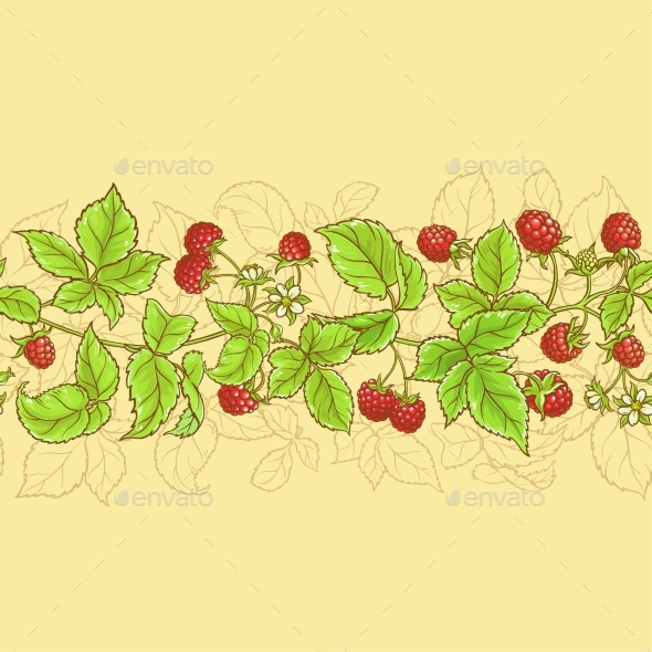 Raspberry Vector Pattern - Food Objects