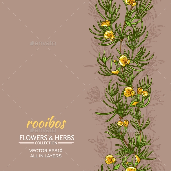 Rooibos Vector Background - Food Objects