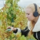 Portrait of a Young Woman Who Works in the Vineyard and Listening To Music on Headphones. Cuts with - VideoHive Item for Sale