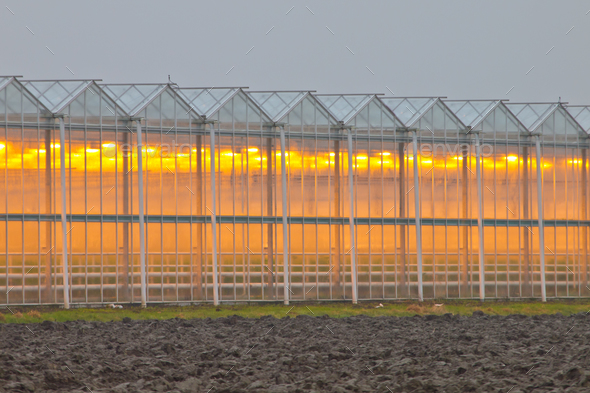 Exterior of a commercial greenhouse - Stock Photo - Images