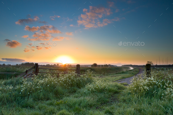 Colorful sunrise in may - Stock Photo - Images