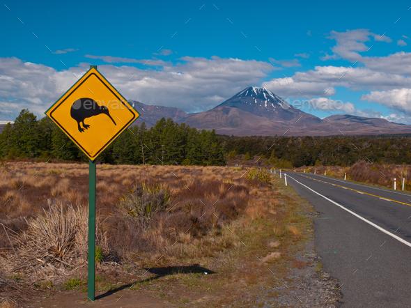Kiwi sign - Stock Photo - Images
