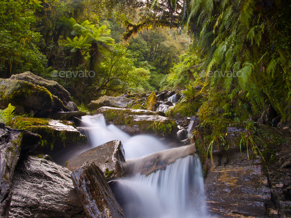 rainforest waterfall - Stock Photo - Images