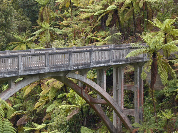 Lonely jungle bridge - Stock Photo - Images