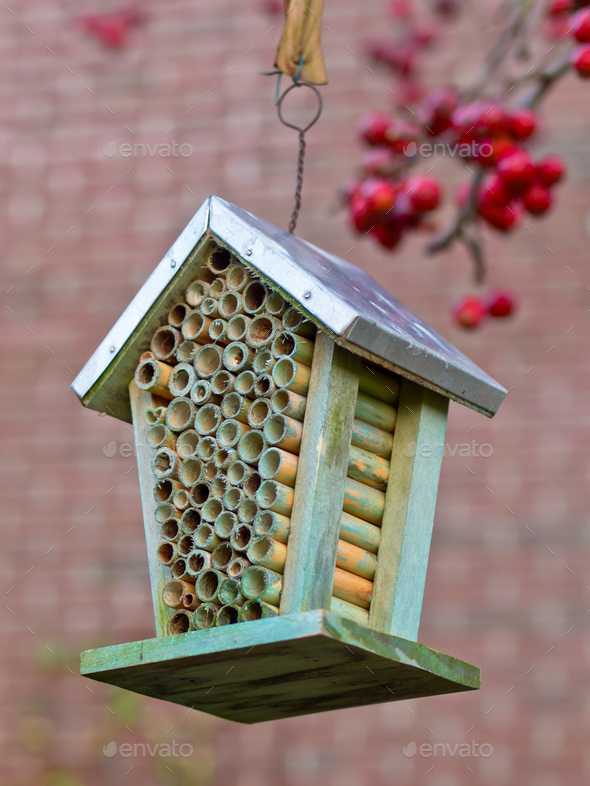 Insect hotel - Stock Photo - Images