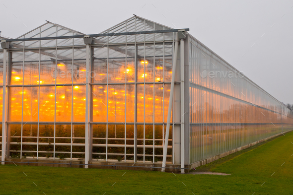The exterior of a greenhouse - Stock Photo - Images