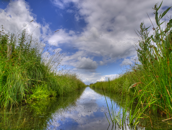 Freshwater ditch in dutch conservation area - Stock Photo - Images