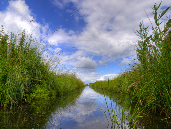 Typical dutch ditch - Stock Photo - Images