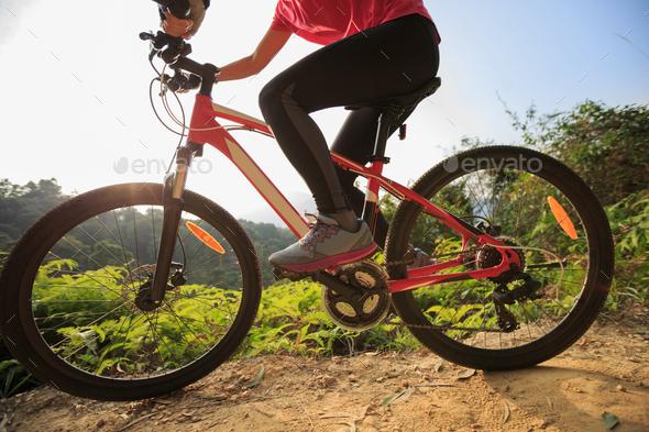 Mountain biking  - Stock Photo - Images